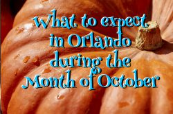 What to expect in Orlando during the Month of October