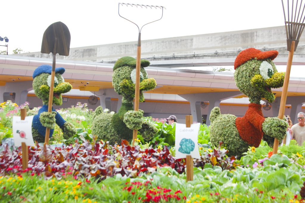 Epcot International Flower and Garden Festival with Huey Dewey and Louie
