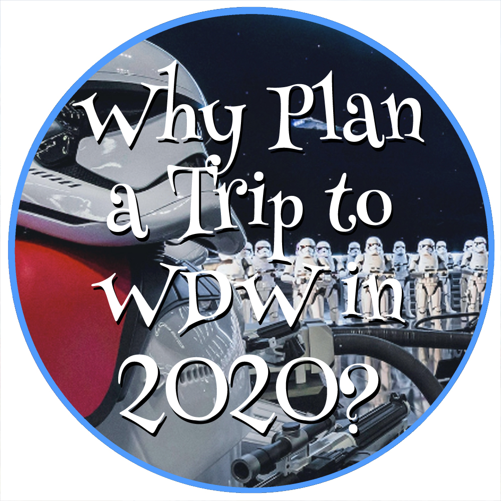 Why Go to Walt Disney World in 2020 small